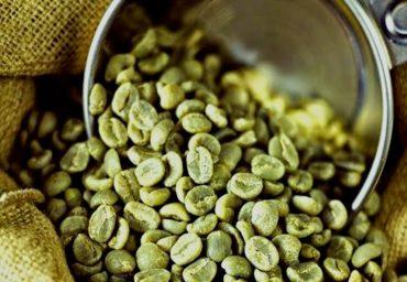 Ce trebuie sa stim despre consumul de cafea verde?