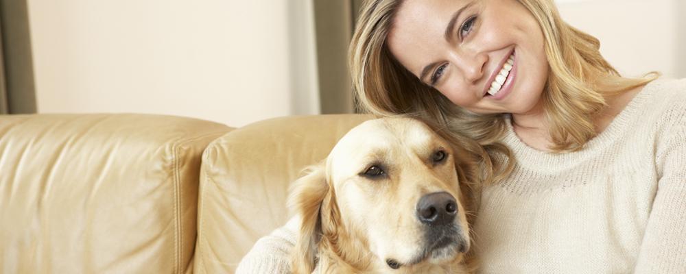 Fizioterapia de la oameni la animale